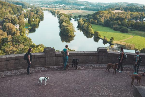 Social Walk Hammerteich/Hohenstein Witten, Juli
