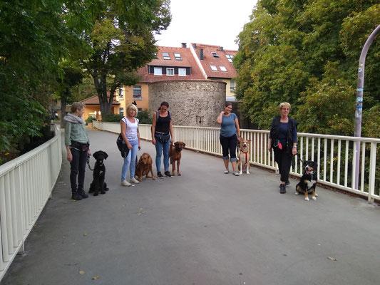 Stadttraining Unna Gruppe