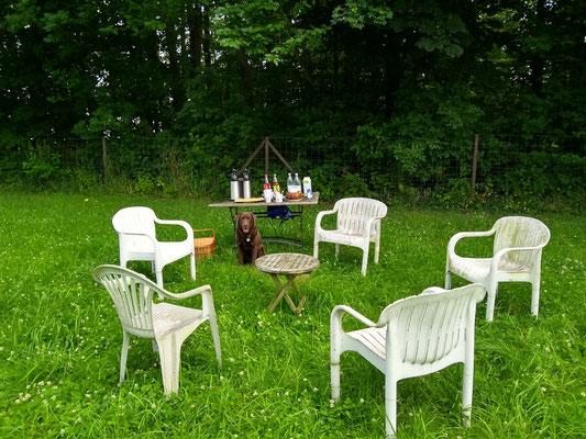 Vorbereitungen Hundesmalltalk