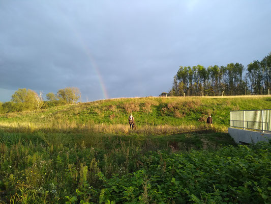 Dummytraining Frohlinde, September