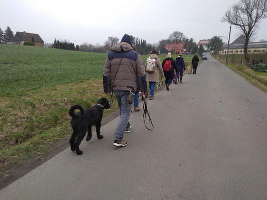Social Walk, Februar