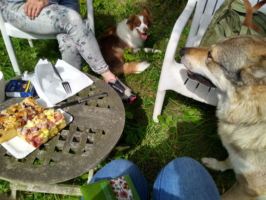 Mittagspause mit Lucy und Tibo