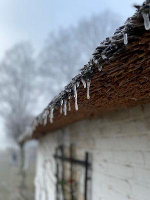 Eiszapfen hängen von einem Reetdach