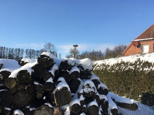 Der Storch in seinem Nest - bei Eis und Schnee und vor blauem Himmel.
