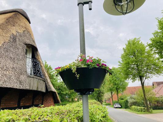 Ein frisch angebrachter und bepflanzter Blumenkasten an einer Laterne in der Nähe des Ferienhofs Hage.