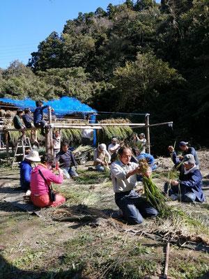 10月25日、上山口寺前谷戸復元プロジェクト