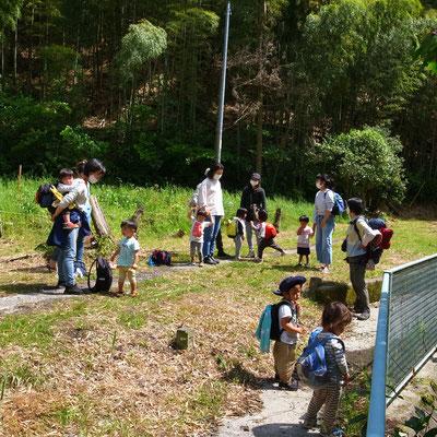 5月6日、大沢谷広場プロジェクト(青空共同保育つくしとたね)