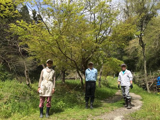 4月4日、イノシシ被害対策プロジェクト+大沢谷広場プロジェクト