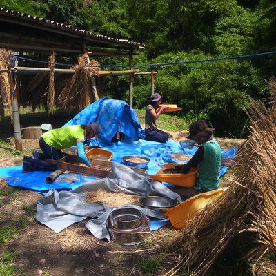 6月26日、農園管理プロジェクト