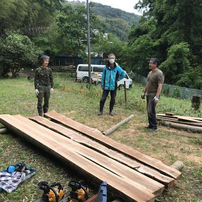 5月22日、サクラ広場環境整備チーム+寺前谷戸復元プロジェクト+イノシシ被害対策プロジェクト+大沢谷広場プロジェクト
