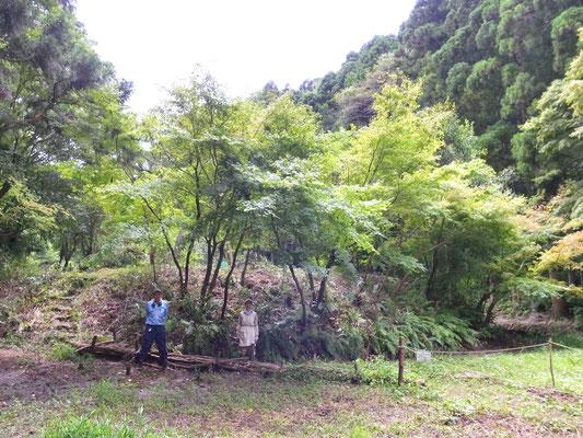 8月23日、イノシシ被害対策プロジェクト+大沢谷広場プロジェクト