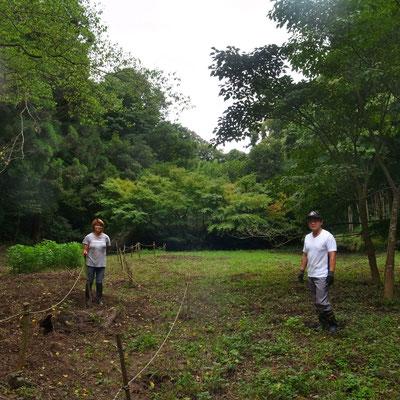 8月21日、イノシシ被害対策プロジェクト+大沢谷広場プロジェクト