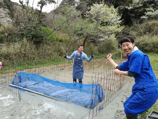 4月7日 農園管理プロジェクト