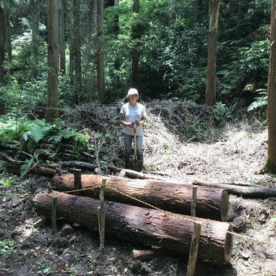 6月28日、イノシシ被害対策プロジェクト+大沢谷広場プロジェクト