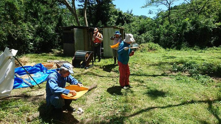 6月25日 農園管理プロジェクト