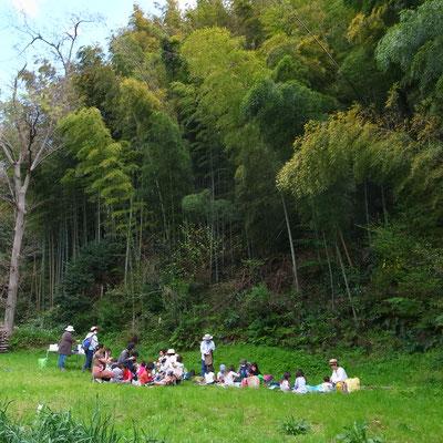 4月4日、大沢谷広場プロジェクト(青空共同保育つくしとたね)