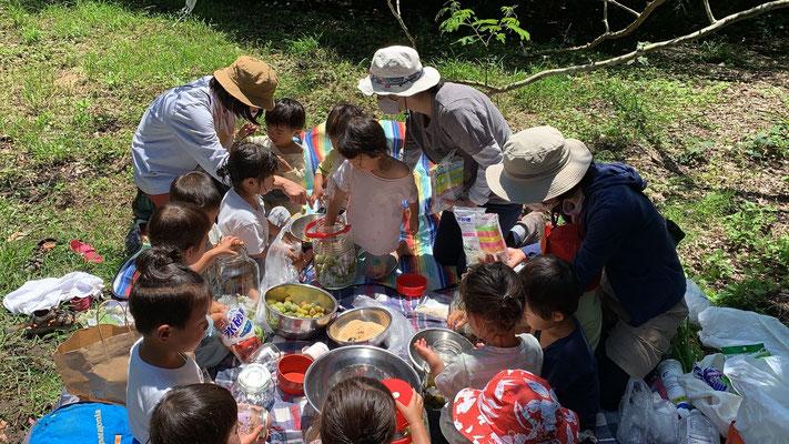 6月1日、大沢谷広場プロジェクト(青空共同保育つくしとたね)