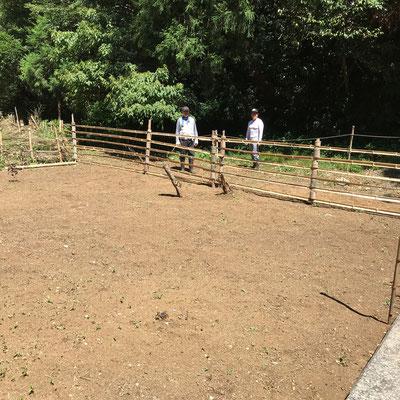 8月29日、イノシシ被害対策プロジェクト+大沢谷広場プロジェクト