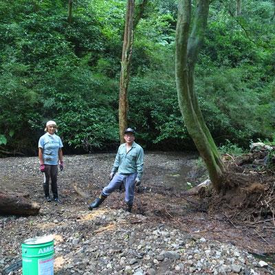 7月24日、イノシシ被害対策プロジェクト+大沢谷広場プロジェクト