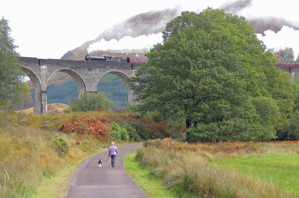 Weltberühmter Anblick: der Jacobite-Dampfzug - bekannt als Hogwarts Express aus den Harry-Potter-Filmen