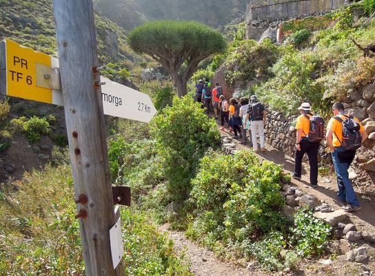 Alle Wanderwege auf Teneriffa sind perfekt beschildert - ideal für individuelle Wanderungen