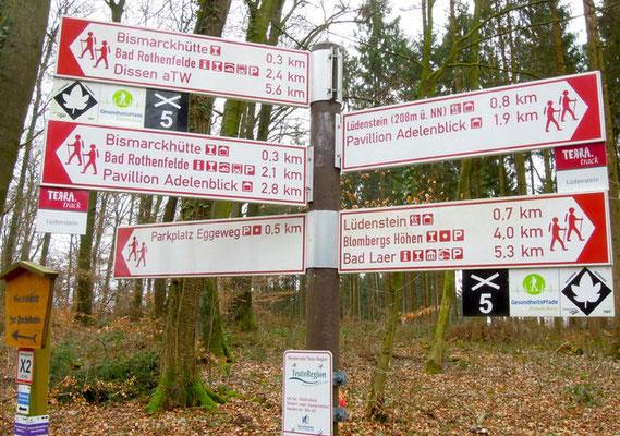 Wanderwege führen rund um Bad Rothenfelde. Foto: Christoph Schumann, 2020