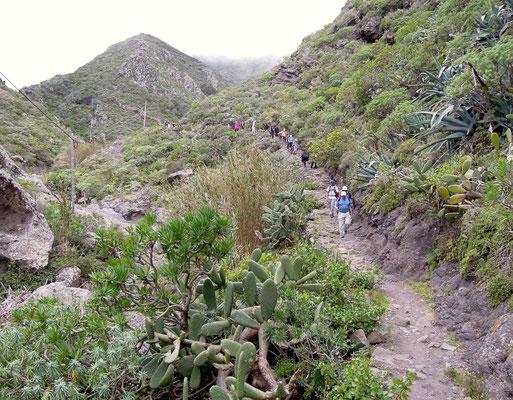 Unterwegs in den Bergen der Halbinsel Anaga