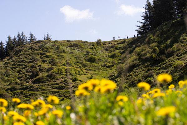 Auf dem Wanderweg Tranum-Fosdal geht es aktiv auf und ab. Foto: VisitJammerbugten