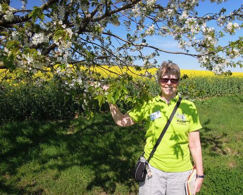 Frühe Blüte – Agrarwissenschaftlerin  Anja Oetmann-Mennen ist eine engagierte Guidin in Hagen a.T.W. Foto: C. Schumann, 2019