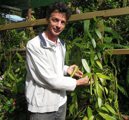 Einige Bauern züchten auf La Réunion hervorragende Vanille. Foto: C. Schumann, 2016