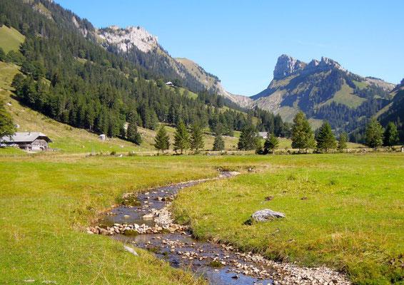 Weite Schönheit: Blick ins Justistal bei Sigriswill im Berner Oberland. Foto: Christoph Schumann, 2019/20