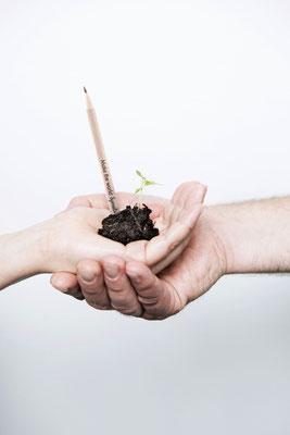 Der Stift Sprout Pencil wird nach seinem Einsatz zu blühenden Pflanzen. Foto: PR