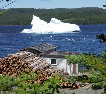Eisberge in Sicht! Selbst im Sommer kann man in Neufundlandsbuchten Eisberge finden –hier in King's Point