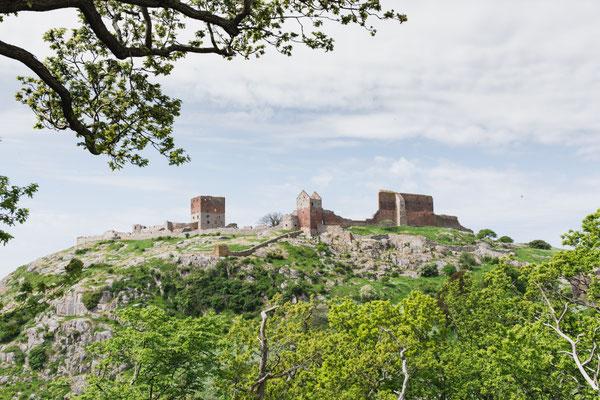 Sehenswert: die Burgruine Hammershus auf Bornholm. Copyright:  Stefan Asp/VisitDenmark