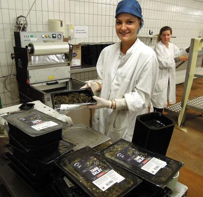 Nordisk Tangin im dänischen Grenå: Produktion – hier von Tang-Salat. Foto: Christoph Schumann