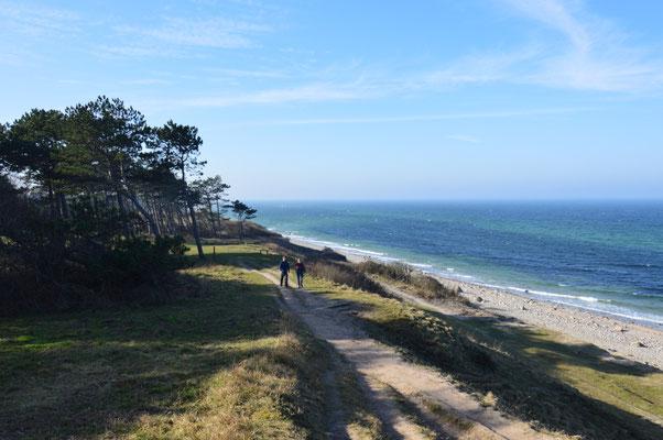 Oft verläuft der neue Kierkegaard-Wanderweg direkt an der Küste Nordseelands. Foto: Kierkegaard by Nature