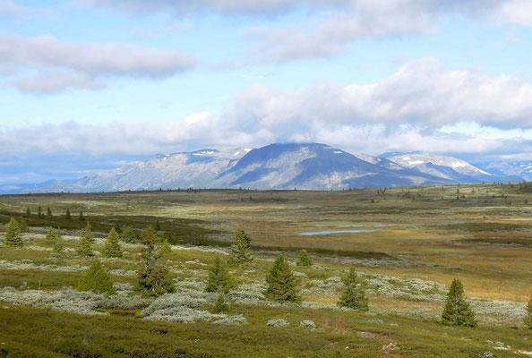 Blick über das Golsfjellet auf die Berge bei Hemsedal