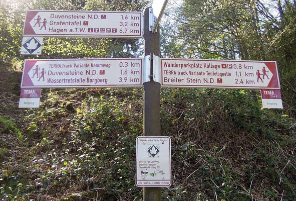 Wegweisend: die TERRA.tracks rund um Hagen a.T.W. bieten Wandererlebnisse. Foto: C. Schumann, 2019