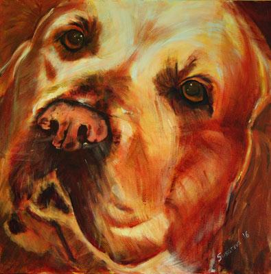 Der Hofhund - Naana, Acryl auf Leinwand, 80 x 80 cm, Susanna Schürch 2016, Fr. 700.-