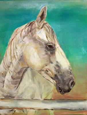 VERKAUFT, Django, wasservermalbare Ölfarben auf Papier, 50 x 64 cm, Auftragsarbeit, Susanna Schürch 2015