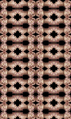 33\hamu_2012\05   |   angelegt auf: 208 x 123 cm