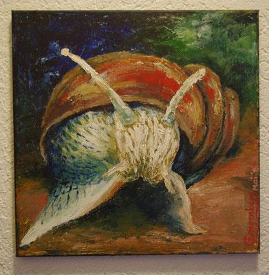 Schnecke (39,5 x 39,5 cm): 50 Euro