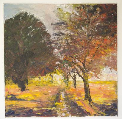 Herbstliche Bäume am Graben (80 x 80 cm: 450 Euro)