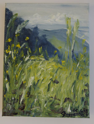 Sommerwiese im Schwarzwald (18 x 23,5 cm)