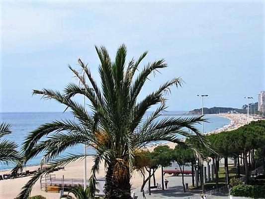 Апартамент в Плайя де Аро (Platja d'Aro) на второй линии моря