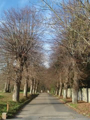 L'entrée du Parc de Baillet
