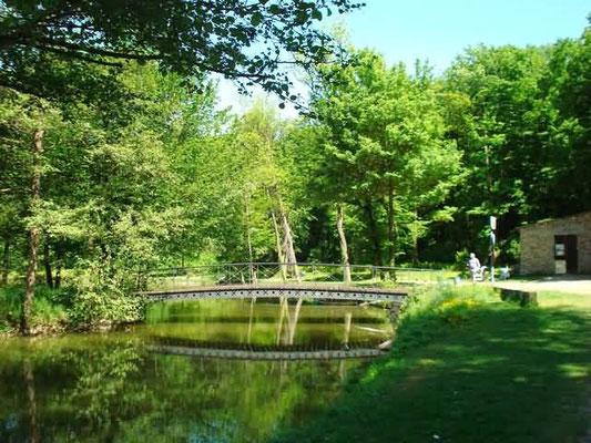 Le Parc du Bois de l'Etang