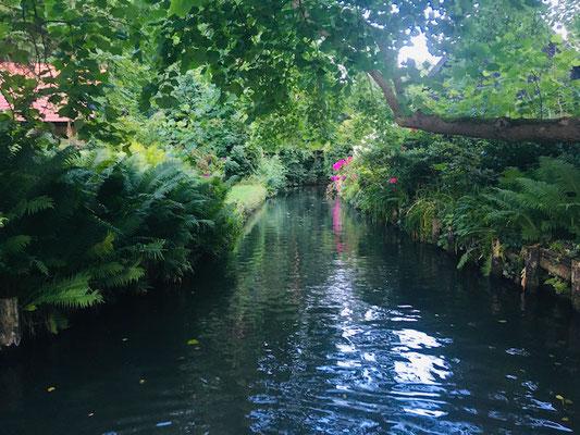 Unterwegs in Lehder Fließen