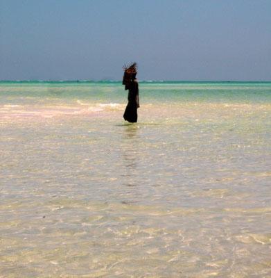 in2kenya watamu spiaggia safari blu