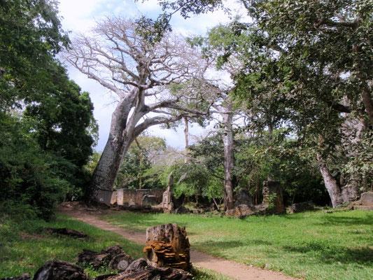 GEDE ROVINE - in2kenya safari watamu